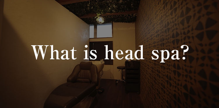 What is head spa